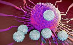 飞尼妥/依维莫司能延长神经内分泌肿瘤患者的寿命吗