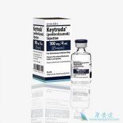 PD-1单抗帕博利珠单抗/K药在国内申请一线治疗肺癌