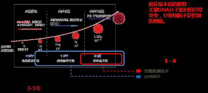 早筛分子观测精准定位