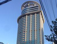 上海海外医疗