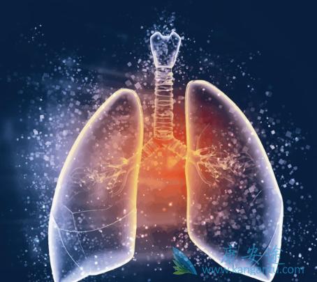 小细胞肺癌